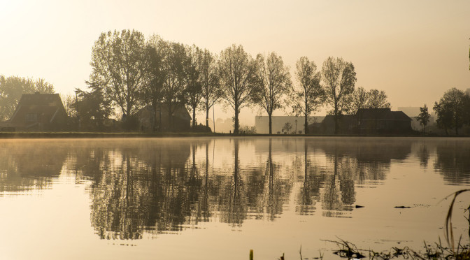 Last shot of the morning. The absence of wind led to great reflections in the water.