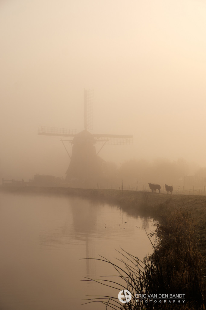 The fog lifted somewhat and the mill was just visible. Luckily, the sheep were patient with me and held their position. Taken with the Fujifilm XT-1 and 18-135 mm lens.